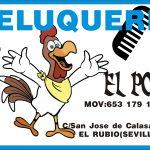 PELUQUERIA EL POLLO C/ SAN JOSE DE CALASANZ 6 EL RUBIO (SEVILLA)